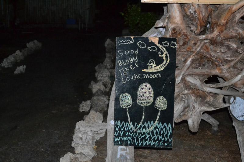 champignons hallucinogenes indonesie
